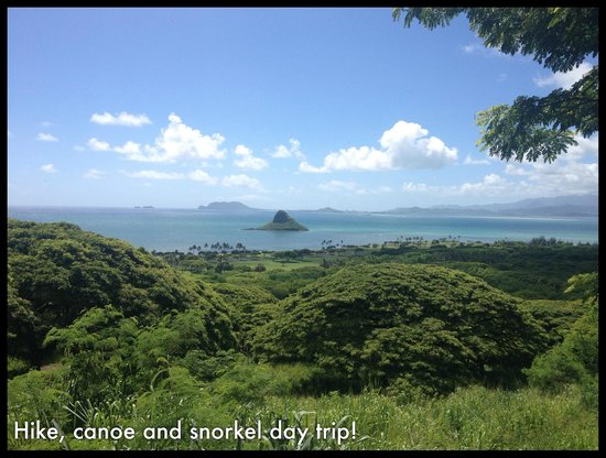 Bike Hawaii Tours: Amazing Scenery