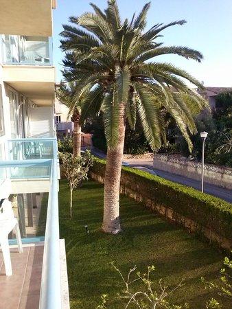 Aparthotel Canyamel Sun: Giardino