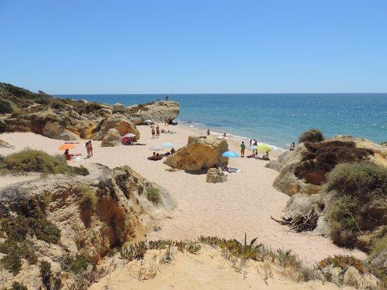 Praia Gale : Praia