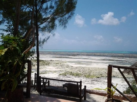 Mbuyuni Beach Village: view from restaurant