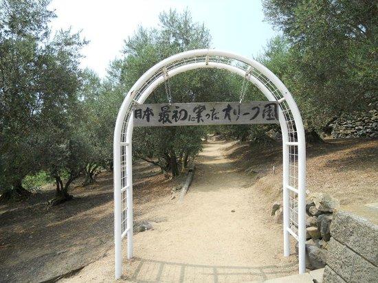 Olive Garden : オリーブの小道へのアーチ