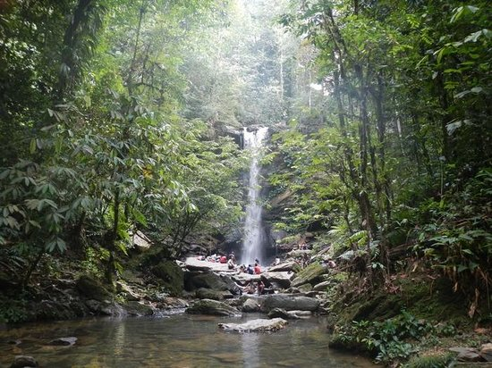 Blanchisseuse, Trinidad: Avocat Waterfall, Trinidad