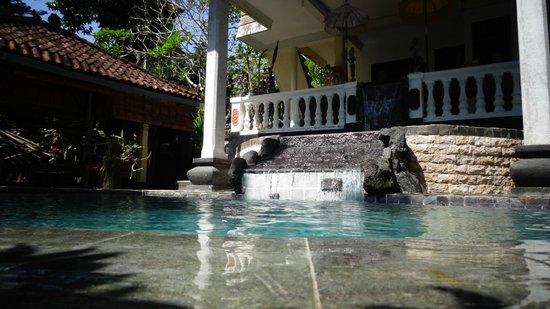 B&B Home Stay Griya Jungutan: Pool