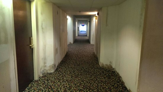 Hampton Inn Sumter: 3rd floor