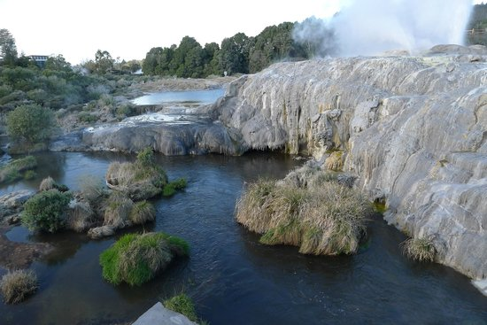 Te Puia : View of the Geothermal Area