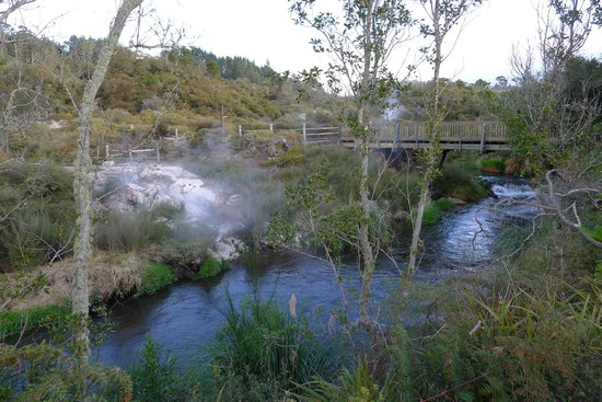 Te Puia: Surrounding Countryside