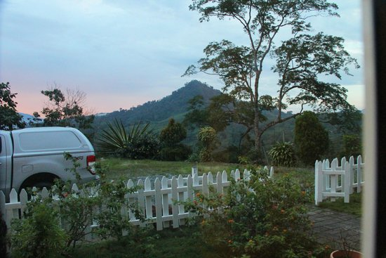 Sabah Tea Garden: View from inside our cottage