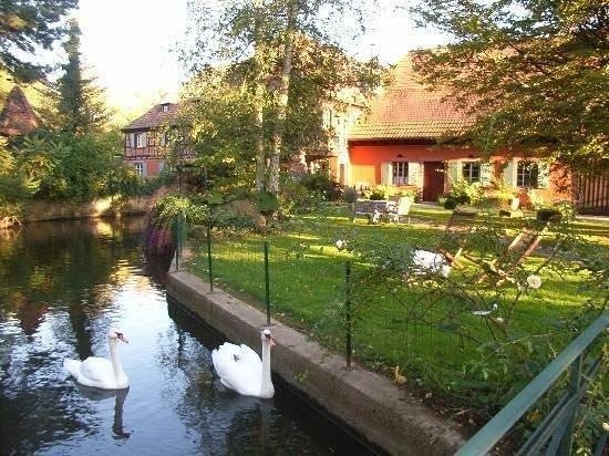 Hotel Le Moulin: Le jardin au bord du ruisseau