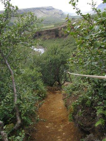 Glymur: Тропа к водопаду Глимур: иногда приходится использовать веревку