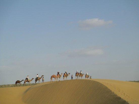 The Real Deal Rajasthan Camel Safari: view