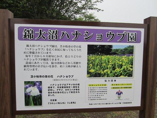 Nishiki Onuma Park : 公園の看板です