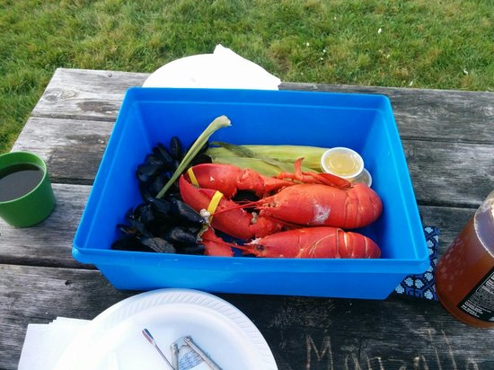 Travelin Lobster : The dinner for two! It was delicious!