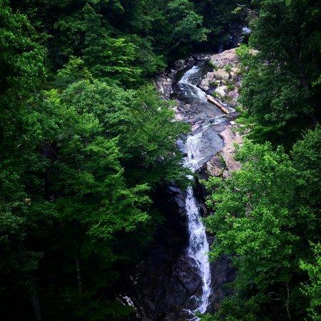 White Oak Canyon Trail: White Oak Canyon Falls