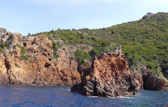 Golfo di Porto, Girolata e Riserva di Scandola: .