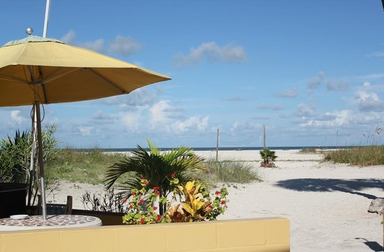 Suncoast Motel : barbecue pit, seating, showers and the Gulf of Mexico