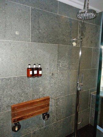 Hotel London-Mayfair: The shower room