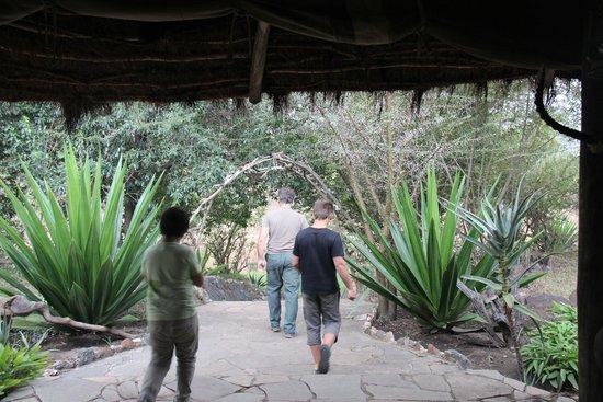 Cheetah Tented Camp : Bajando al río