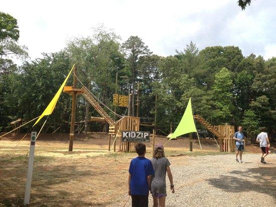 Asheville Zipline Canopy Adventures: new kid zipline