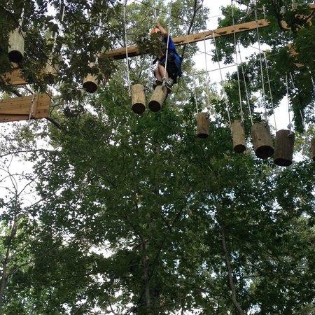 Asheville Zipline Canopy Adventures: log crossing