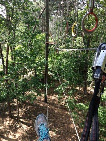Asheville Zipline Canopy Adventures: 20-30' up, easy-intermediate course.