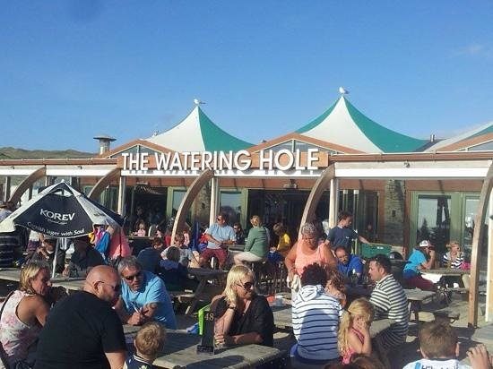 The Watering Hole: amazing