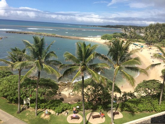 Turtle Bay Resort: this is the view from our room 403