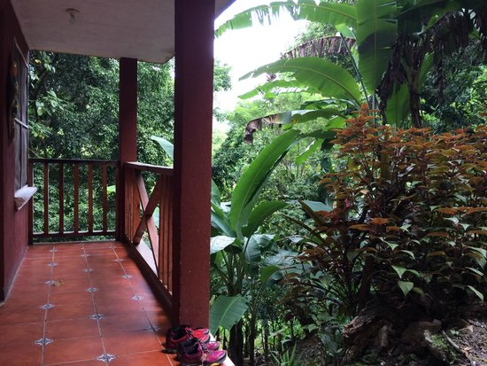 El Muro Lanquin : Sarrounded by gorgeous jungle and rolling hills.  The bird calls in the morning were quite somet