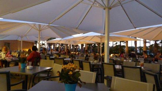 Salgados Palm Village Apartments & Suites: Bar da receção - espetaculos à noite