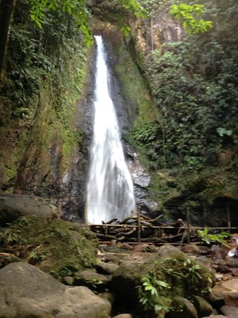 Portsmouth, Dominica: Syndicate Falls