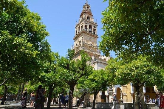 Moschee-Kathedrale (Mezquita de Córdoba): апельсиновый дворик