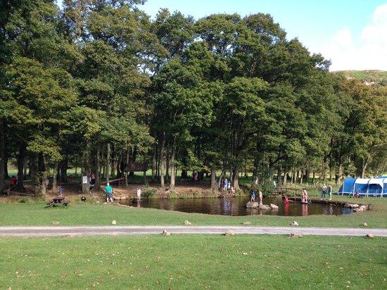 Fisherground Campsite : Fisherground Childrens Adventure Play Area