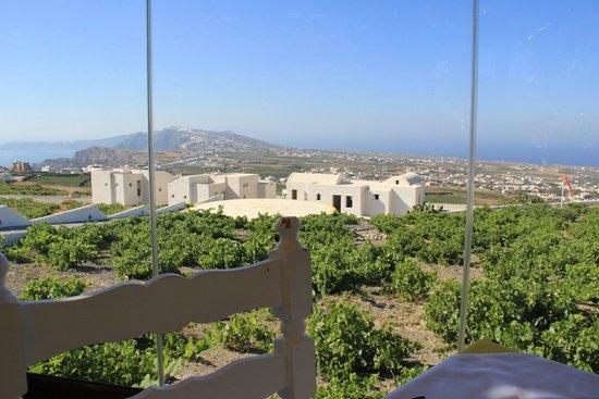 Pyrgos Restaurant: Вид из окна