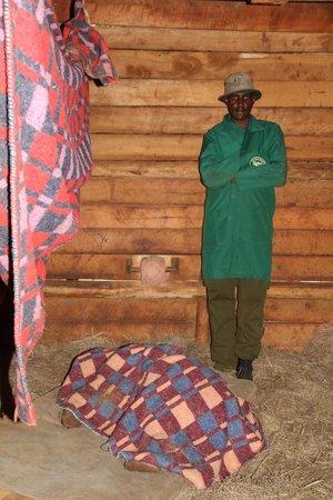 David Sheldrick Wildlife Trust : Sleeping baby