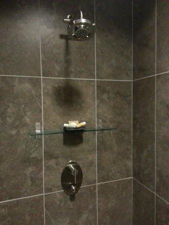 CityFlatsHotel - Holland: Lovely walk-in shower