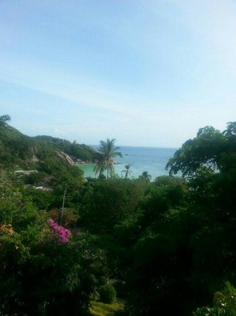 Ko Tao Resort: Ausblick Bungalow