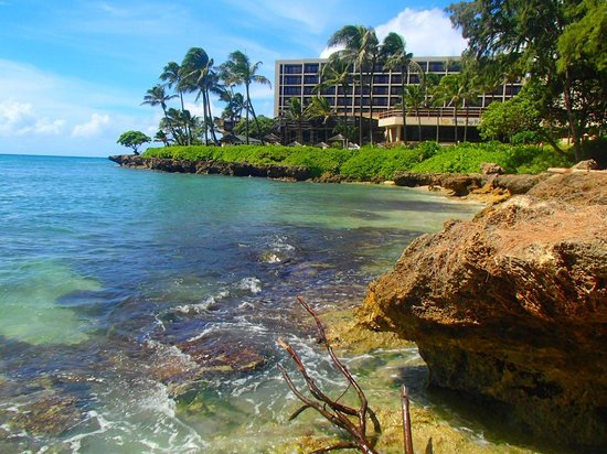 Turtle Bay Resort: From from the beach cottage area.