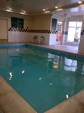 Hilton Garden Inn Denver Airport : Small pool