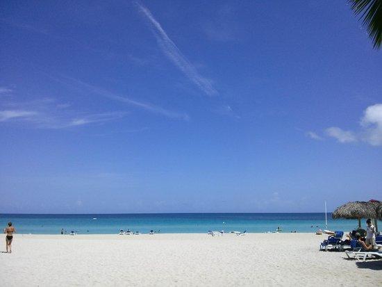 Melia Las Americas: Beach
