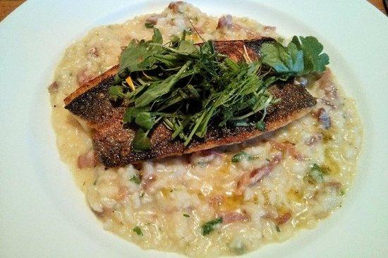 The Malt Shovel: Sea bass and risotto