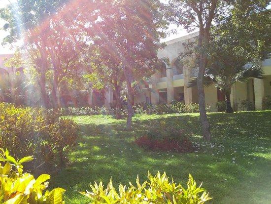 Melia Las Americas: Gardens