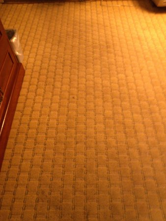 Best Western Plus ClockTower Inn: Not so great carpet and smell.
