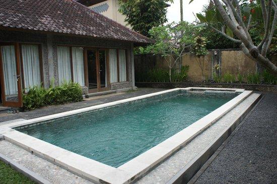 Nefatari Exclusive Villas: Villa et piscine