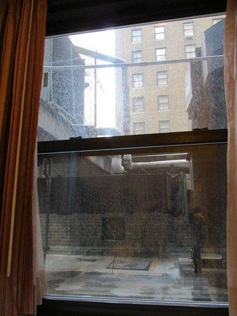 ذا روزفلت هوتل نيويورك سيتي: view from superior double double