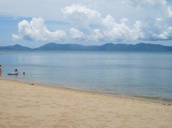 Pinnacle Resort Samui: praia Mae Nam