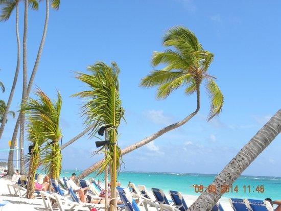 Hotel Riu Naiboa: zona de la playa