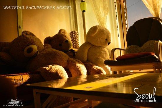 Whitetail Backpacker & Hostel: Living Room