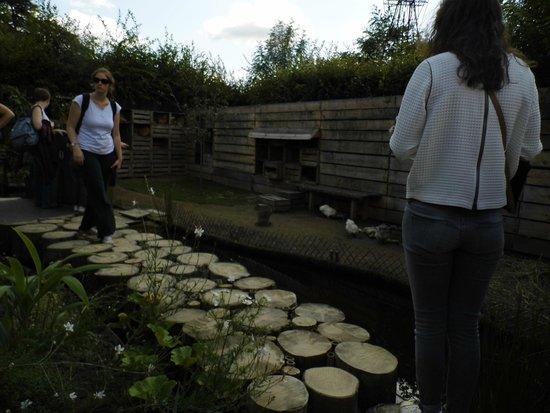 Domaine de Chaumont-sur-Loire : Un jardin du festial