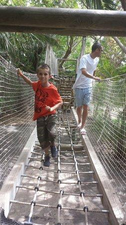 Park Las Aquilas Jungle Park : Adventure trail to do...very good!!