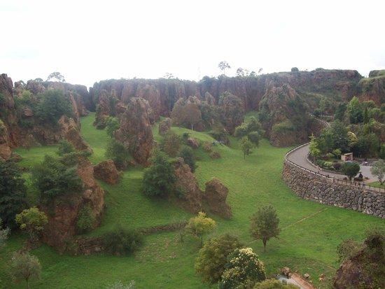 Jaguares - Foto di Parque de la Naturaleza de Cabarceno, Obregon - TripAdvisor