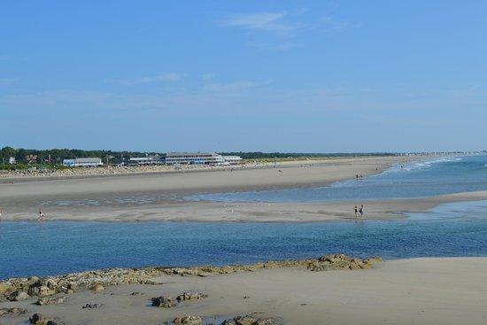 The Neptune Inn: view of the beach